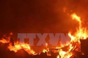 Cháy căn hộ ở Khu chung cư Nam cầu Trần Thị Lý, Đà Nẵng