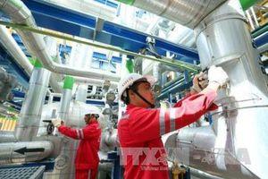 PV Power xúc tiến triển khai các dự án nhà máy nhiệt điện