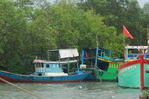 TP.HCM: Tăng cường thợ lặn tìm kiếm thuyền trưởng bị chìm trên sông Gò Gia