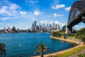 Australia giảm mạnh tiếp nhận người nhập cư