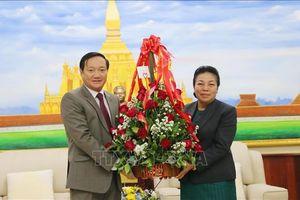 Gìn giữ, vun đắp tình đoàn kết đặc biệt Việt Nam - Lào
