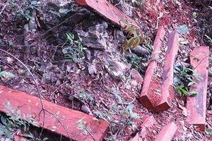 Làm rõ hành vi các đối tượng trong vụ phá rừng ở Phong Nha Kẻ Bàng