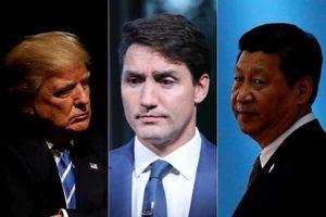 Mỹ hay giấc mộng 5G: Canada quá khó lựa chọn!