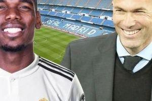 Tiết lộ giấc mơ đến Real với Zidane, Pogba lại khiến M.U lo sốt vó
