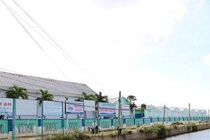Ninh Thuận: Phó Chủ tịch tỉnh kết luận về nguyên nhân đất nhiễm mặn