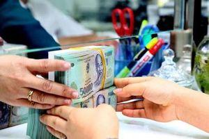 Hoạt động 5 năm, Quỹ Bảo lãnh tín dụng chỉ phục vụ 1 doanh nghiệp
