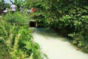 Đà Nẵng: Mương nước bốc mùi bất thường, người dân lo ngại ô nhiễm