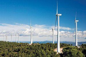 Điện gió: Rất 'nóng' và nhiều lỗi