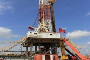 PVN: 'Tiền hoa hồng' ở các hợp đồng dầu khí là thông lệ bình thường ở quốc tế