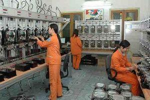 Công đoàn Điện lực Việt Nam: Hưởng ứng Tháng an toàn vệ sinh lao động