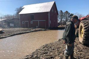 Nông dân Mỹ : trắng tay vì thảm họa liên hoàn