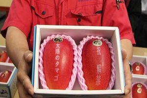 Giật mình với xoài Nhật giá siêu đắt 1,7 triệu đồng/quả