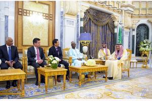 Đại sứ Vũ Viết Dũng trình Thư Ủy nhiệm lên Quốc vương Saudi Arabia