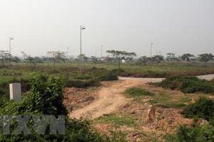 Thuê đất Sơn Trà với giá 1.000 đồng/m2/năm