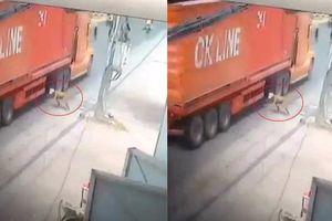 'Đứng tim' clip người đàn ông lao đầu vào gầm xe container