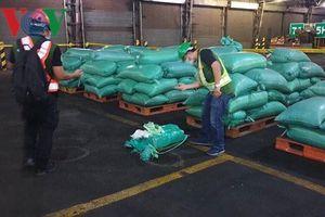 Vụ vận chuyển 300kg ma túy tại TPHCM: Thu giữ thêm 276kg ma túy đá