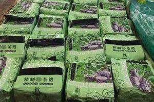 Philippines bắt 2,7 tạ ma túy được chuyển từ Việt Nam