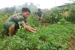 Đẩy mạnh tăng gia sản xuất ở Đồn Biên phòng Thu Lũm