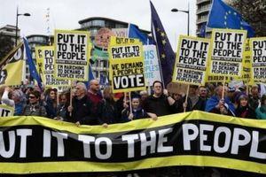 Kiến nghị bỏ Brexit đã thu thập được gần 4 triệu chữ ký