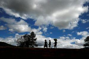 Bão càn quét Mozambique, số người chết tăng lên hơn 400