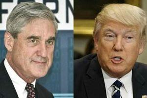 Không có bằng chứng nhóm vận động tranh cử của Tổng thống Mỹ thông đồng với Nga