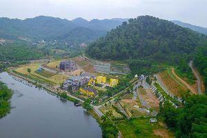 Chủ tịch Hà Nội: Xử lý dứt điểm vi phạm đất rừng tại Sóc Sơn