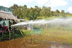 Báo động đỏ nguy cơ cháy ở lâm phần rừng tràm Cà Mau