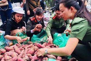 Các chiến sĩ Công an TP Hà Nội 'giải cứu' hơn 200 tấn khoai giúp bà con Gia Lai