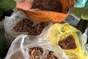 Hà Nội: Hơn 7 tấn nguyên liệu thuốc bắc không rõ nguồn gốc, xuất xứ bị 'tóm'