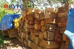 Bắt tạm giam Trưởng Ban Quản lý rừng phòng hộ La Ngà