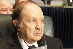 Tổng thống Algeria đang bị quân đội 'ép' từ chức là ai?