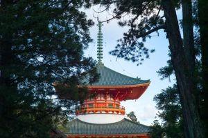 Hành hương trên núi thiêng Koyasan