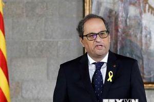 Tây Ban Nha kiện Thủ hiến Catalonia không dỡ biểu tượng ủng hộ độc lập