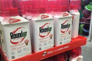 Yêu cầu Monsanto có trách nhiệm khắc phục hậu quả chất độc da cam ở Việt Nam