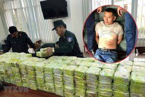 Bắt kẻ cầm đầu đường dây mua bán hơn 570kg ma túy ở TP.HCM