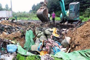 Tiêu hủy hơn 1,6 tấn nầm lợn nhập lậu