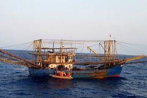 Kịp thời cấp cứu thuyền viên tàu cá bị nạn trên biển