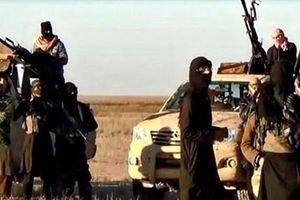 Nhà nước Hồi giáo chuyển trọng tâm sang các nước SNG giáp giới Nga