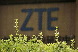 Sau năm lỗ 1 tỉ USD, ZTE âm thầm đầu tư cho 5G