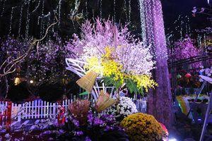 Nhiều điểm mới tại Lễ hội hoa anh đào Nhật Bản- Hà Nội 2019