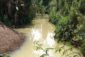 Đề xuất phạt 2 công ty xả nước thải có mùi thuốc trừ sâu