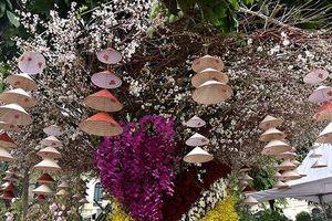 Thêm một ngày Lễ hội hoa anh đào Nhật Bản - Hà Nội