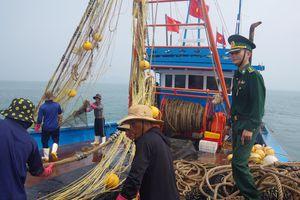 Bắt giữ tàu giã cào khai thác trái phép trên vùng biển Thừa Thiên Huế