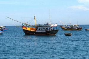 Được gì sau 15 năm hợp tác nghề cá Vịnh Bắc Bộ Việt Nam-Trung Quốc?