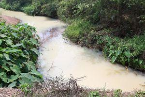 Tìm ra doanh nghiệp xả hàng nghìn m3 nước vàng đục, bốc mùi thuốc sâu ra sông ở Đà Nẵng