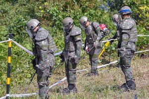 Hàn Quốc gỡ mìn, tìm kiếm hài cốt binh sĩ trong chiến tranh Triều Tiên