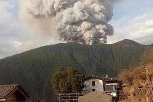 Khống chế cháy rừng, 26 lính cứu hỏa thiệt mạng