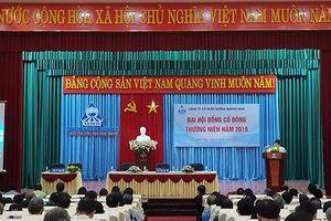 Cty Đường Quảng Ngãi tổ chức thành công Đại hội đồng Cổ đông thường niên 2019