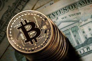 Bitcoin sắp thoát ra khỏi thị trường con gấu, Satoshi Nakamoto bất ngờ xuất hiện trở lại