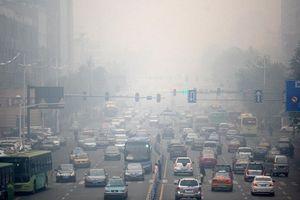 Nhiều quốc gia đề xuất cấm ô tô chạy bằng xăng dầu